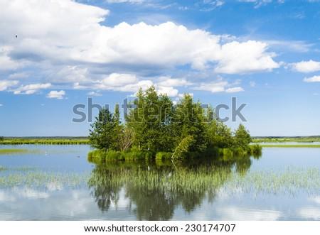 Green Island Forest Around  - stock photo