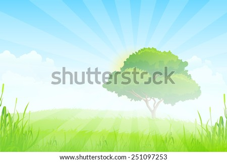 Green Landscape with Sun, Clouds, Grass and one Tree in the Fog - stock photo