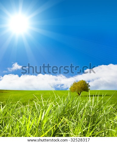 Green landscape with sunray - stock photo