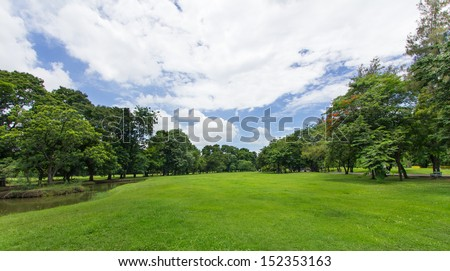 Green Lawn and Trees with blue sky at the public park  - stock photo