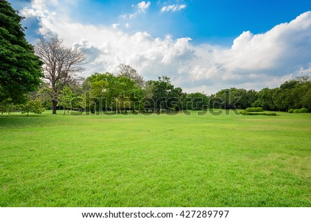 Green lawn with blue sky and clouds in park - stock photo
