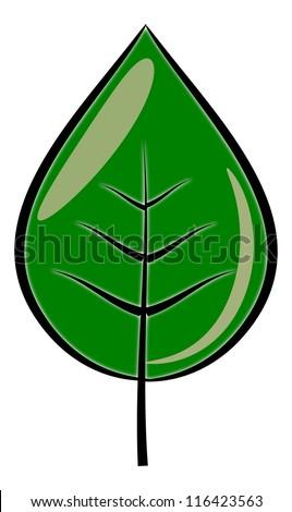 Green leaf isolated illustration - stock photo