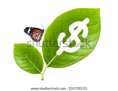 green leaf with a cut out dollars and butterfly, Concept save the earth, save money, Ecology concept - stock photo