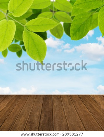 Green leaf with sky and wood  background - stock photo