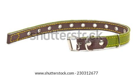 green leather dog collar - stock photo