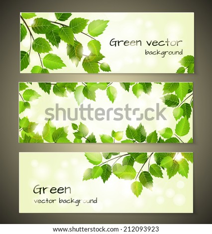 Green leaves banners set design templates - stock photo