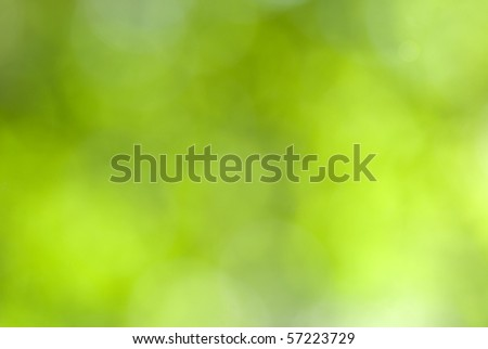 Green leaves bokeh - stock photo