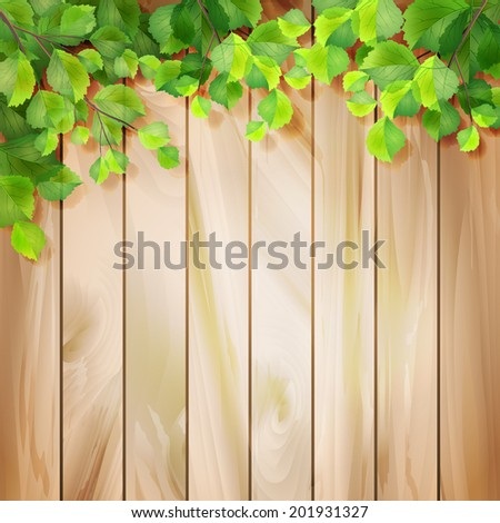 Green leaves on a wood texture. Season background with tree branches, sunlight coming through the leaves, drop shadow on a wall, wooden textured fence - stock photo