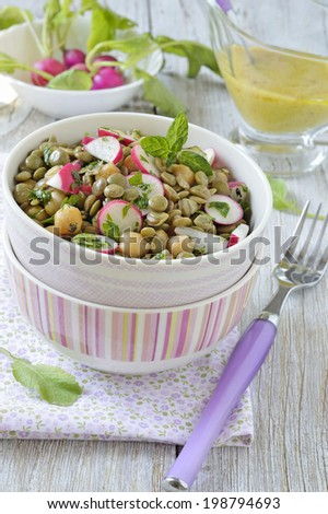 Green lentil and chickpea salad with radish and herbs. - stock photo