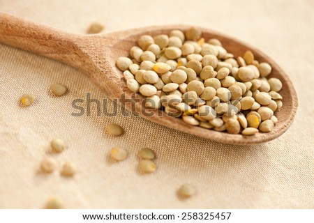 Green lentils seeds on wooden spoon, healthy red green seeds heap on cloth in studio shot, day light, horizontal orientation, nobody. - stock photo
