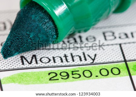 Green marker and  payslip with monthly wage - stock photo