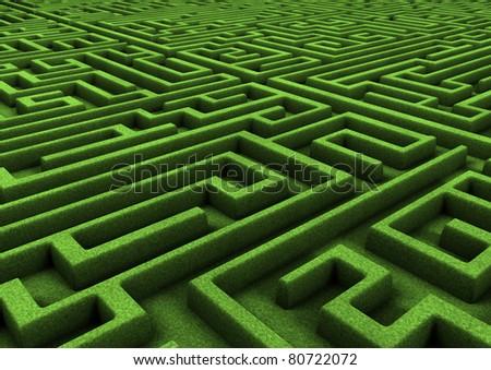 green maze - stock photo