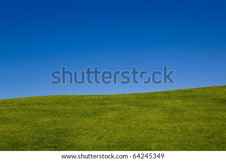 Green meadow - stock photo