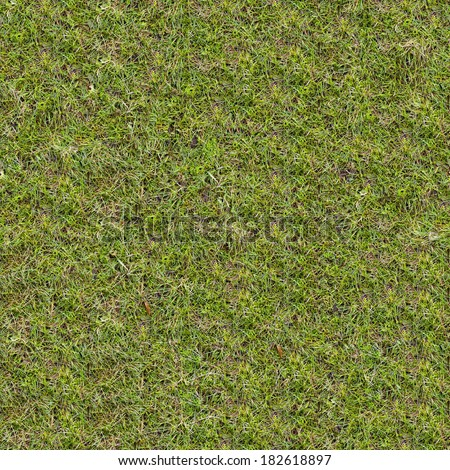 Green Meadow Grass in Spring. Seamless Tileable Texture. - stock photo