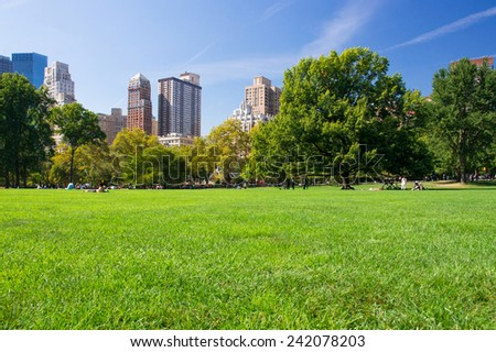 Green meadow in New York Central Park with Manhattan buildings on a background, USA. - stock photo