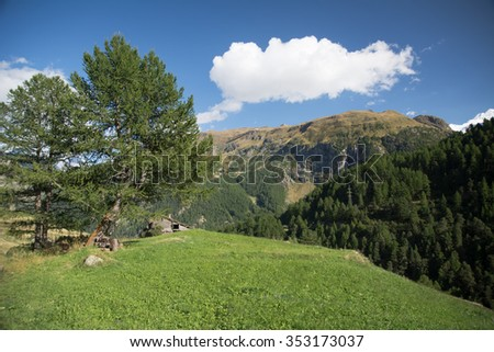 Green meadow with a small house in the swiss Alps, Zermatt - stock photo