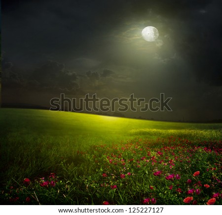 green meadow with sky and  and pink flowers - stock photo
