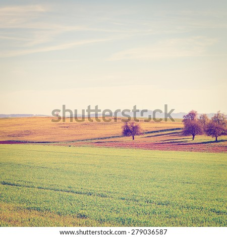 Green Meadows and Plowed Fields on the Hills of Switzerland, Instagram Effect - stock photo