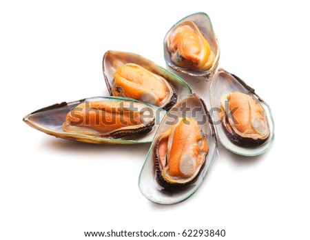 Green mussels on white background - stock photo
