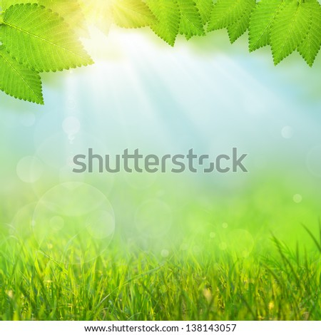 Green natural backgrounds with selective focus - stock photo