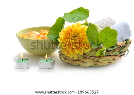 green nature spa still life on white background - stock photo
