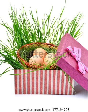 Green nest with eggs in the gift box isolated on white - stock photo