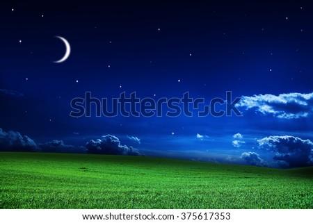 green night field. star sky - stock photo