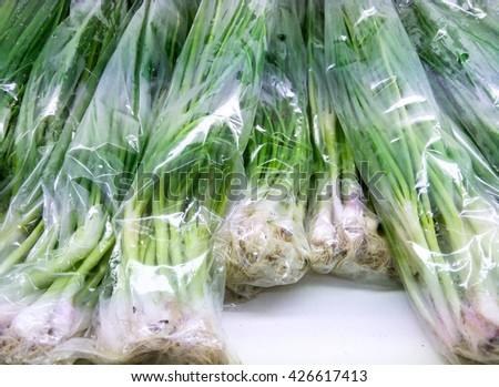 green onion with  plastic bag on display In the mall , fresh Onion - stock photo