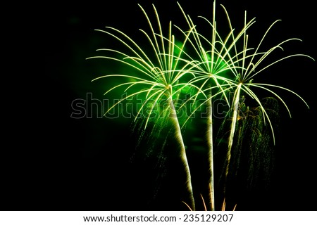Green palm fireworks on the black sky background with copyspace for text - stock photo