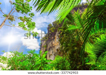 green palm leaves close up and big rock in Thailand - stock photo