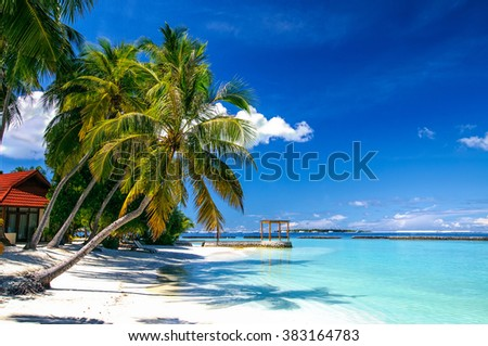 Green palm tree at white sand beach on tropical paradise island - stock photo