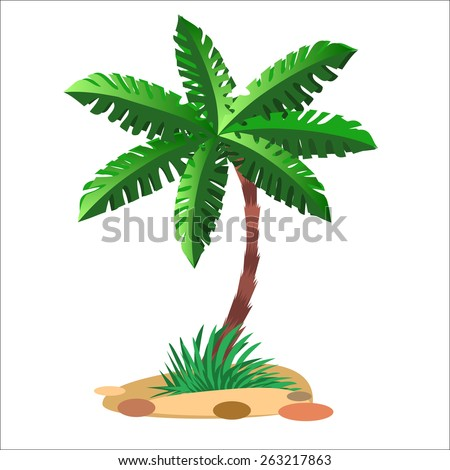 Green palm tree on a sandy soil and a neutral background - stock photo