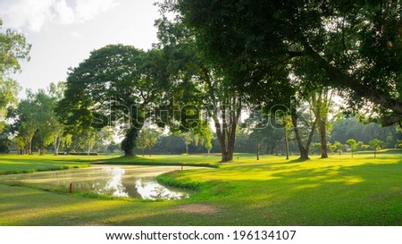 Green park with trees at sunset light. - stock photo