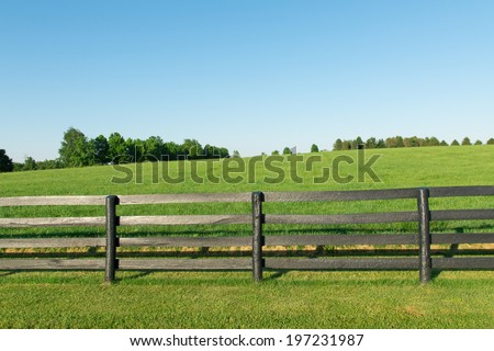 Green pastures of horse farms with black wooden fence. Country summer landscape. - stock photo