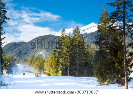 Green pine trees, white snow peak of the mountain behind against blue sky - stock photo