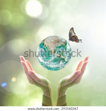 Green planet with butterfly over human hands in blurred green color bokeh background natural tree leaves facing sun flare: Saving environment CSR WWD concept: Element of this image furnished by NASA - stock photo