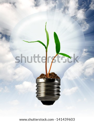 green plant growing in a bulb - stock photo