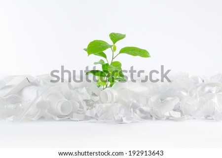 Green plant growing in a white trash consisting of bottles, paper, plastic bags and utensils. Performance of the whole composition on a white background. Composition made on white background.  - stock photo
