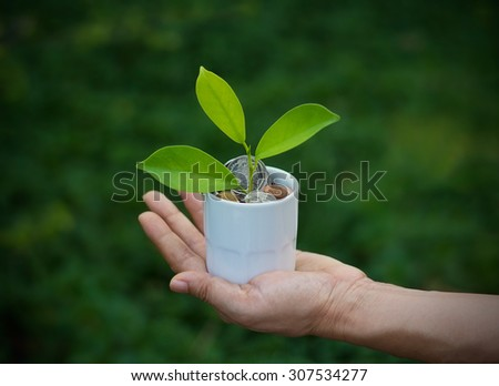 green plant growing out of coins in white cup on hand nature background, soft focus - stock photo