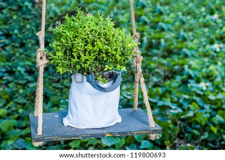 Green plant in the swing. Good photo for environmental concepts and sustainability. - stock photo