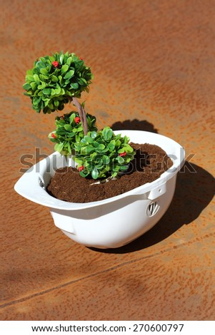 Green plant in white helmet on rusty background - environmental friendly industry concept - stock photo