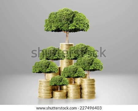green plant on the gold coins, money concept  - stock photo