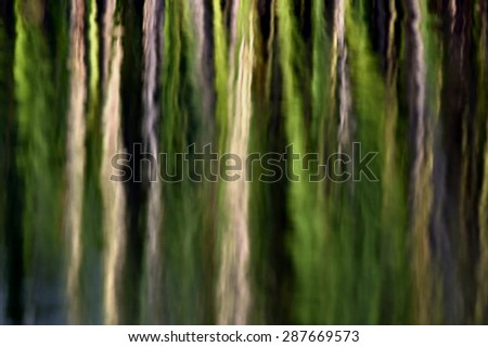 Green plant reflection in the water background. Abstract green Natural background. - stock photo