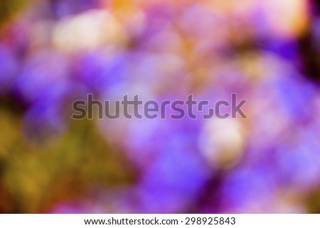 green, purple, yellow defocused bokeh abstract background - stock photo