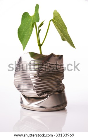 Green recycling concept plant growing out of tin can on white reflective background - stock photo