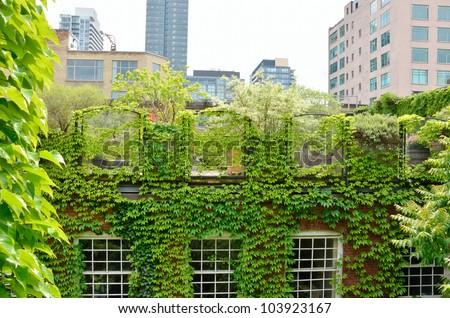 Green Roof garden in urban setting - stock photo