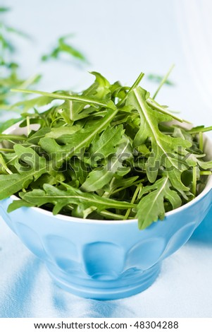 Green Rucola Fresh Salad In Blue Bowl - stock photo