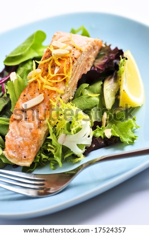 Green salad with grilled salmon fillet and lemon - stock photo