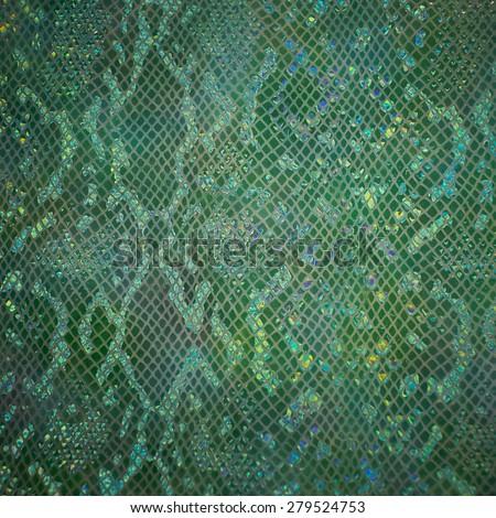 Green snake skin - stock photo
