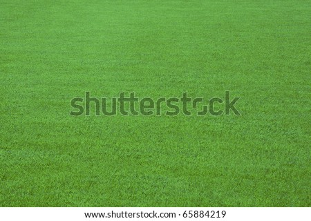 Green soccer field - stock photo